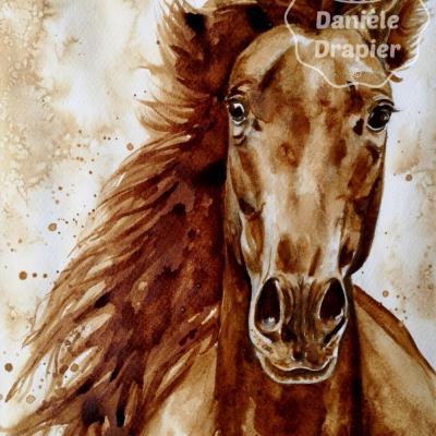 Portrait animalier, cheval peint avec du café, 24x32cm : 75€ hors frais de port