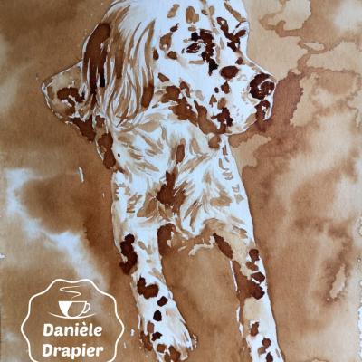 Portrait animalier peint avec du café 24x32cm setter anglais